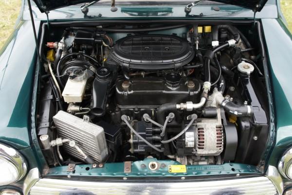 Rover mini (13)