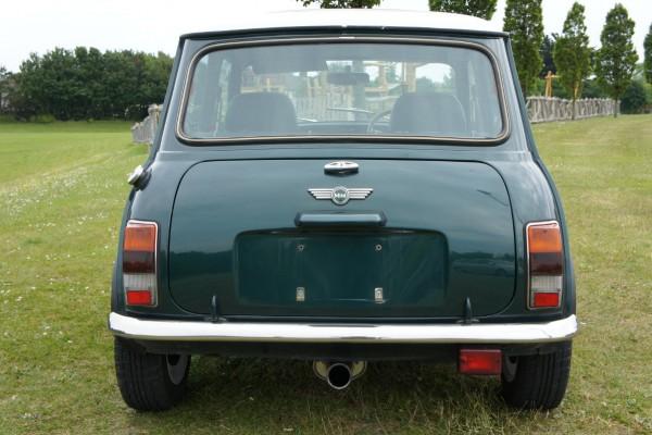 Rover mini (4)