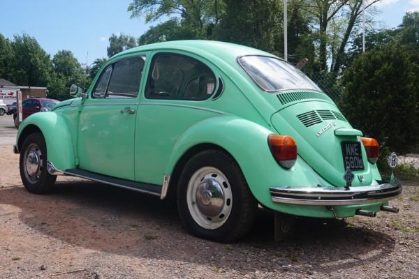 bug  (2)