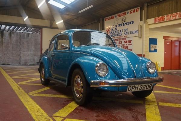 Beetle  (1)