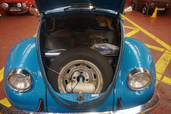 Beetle  (12)