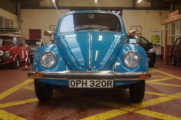 Beetle  (6)