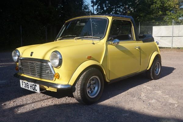 Mini  (8)